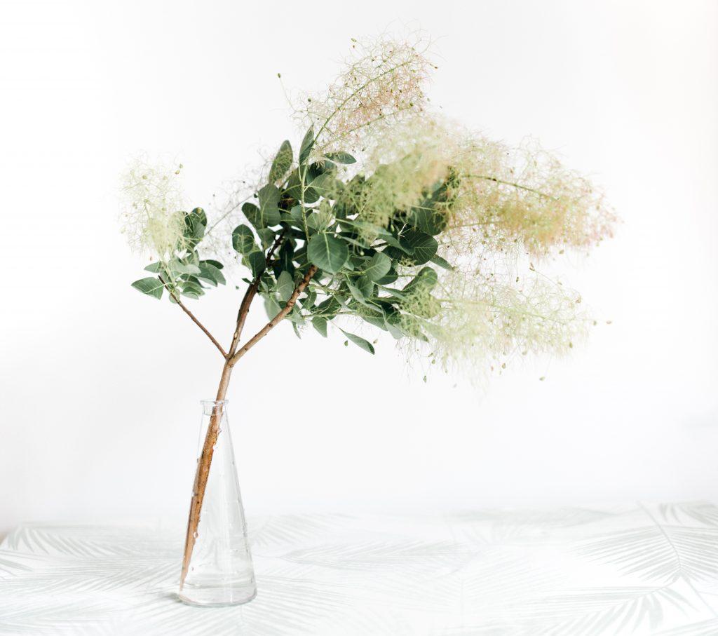 スモークツリーと花瓶